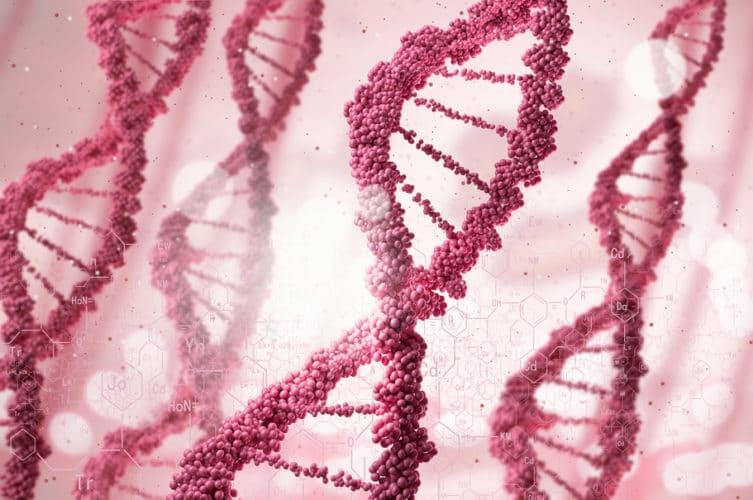 apoe4-gene