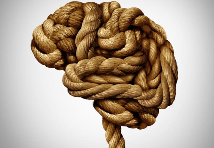 A rope shaped in the form of the brain to represent ApoE4 gene's contribution to Alzheimer's.