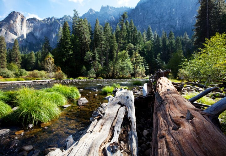 green-spaces-health-Yosemite