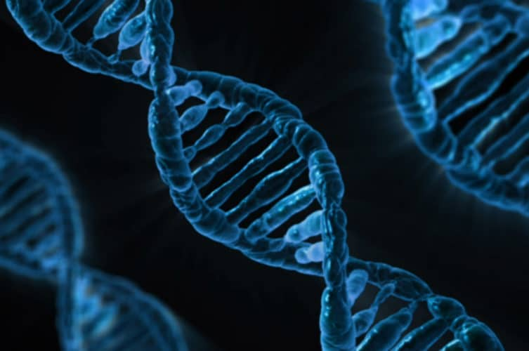 Scientists Discover Possible Genetic >> Scientists Discover 3 New Common Genetic Threads Among Alzheimer S