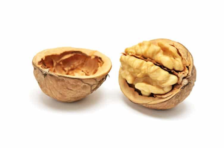 brain-nuts