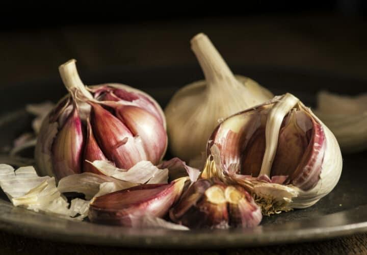 garlic-memory