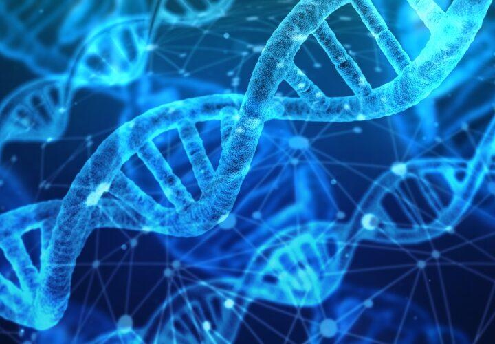 genetic test for alzheimer's