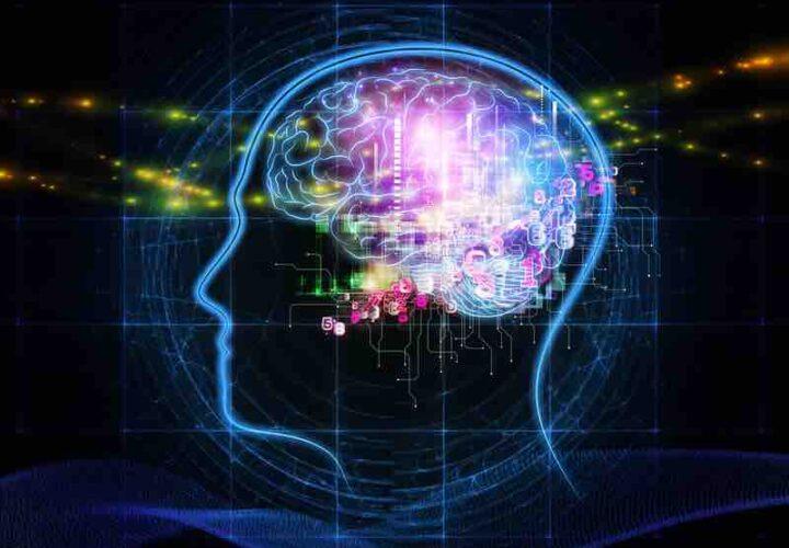 design of brain using circuitry