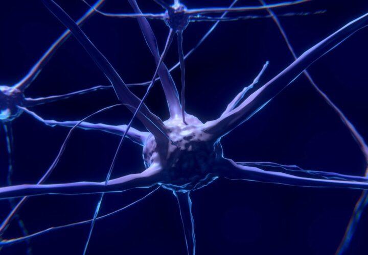 Alzheimer's enzyme