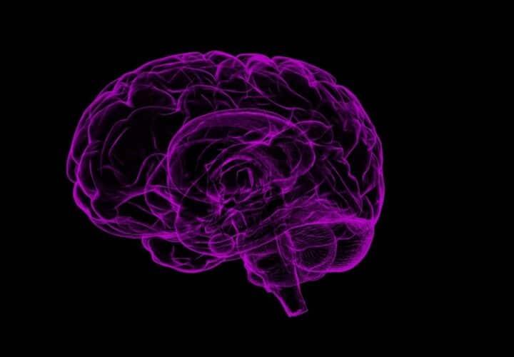 Alzheimer's Prediction and Diagnosis
