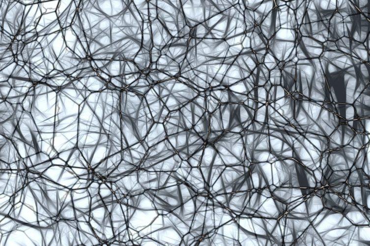 Alzheimer's inflammation