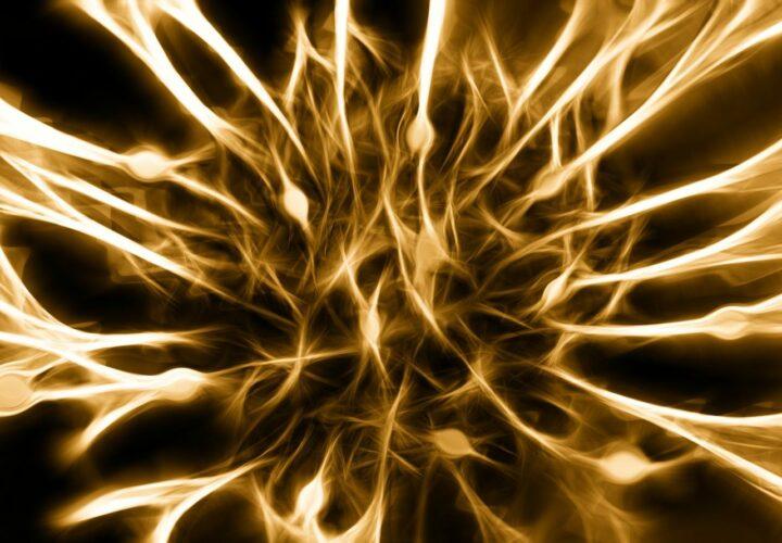 amyloid inflammation