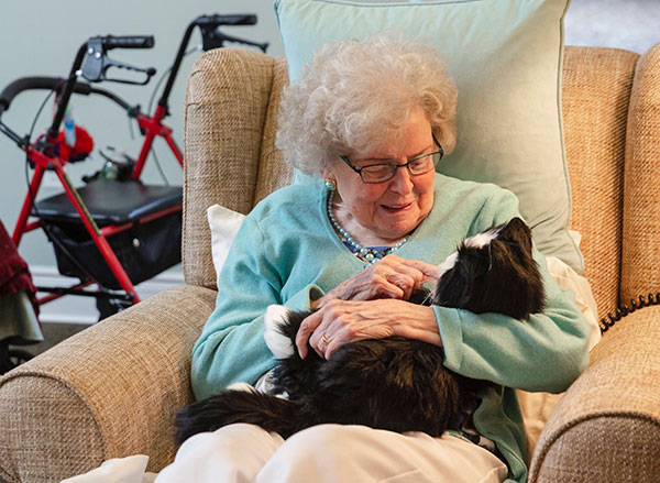 Robotic pets for older adults with dementia