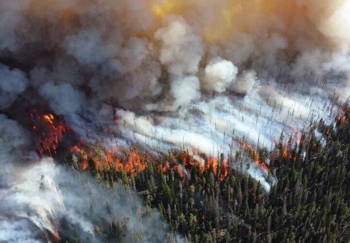 long-term care evacuates wildfire