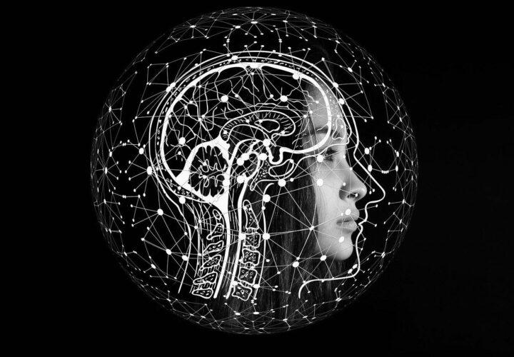 brain universe