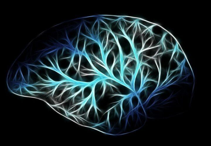 Mitochondria Alzheimers