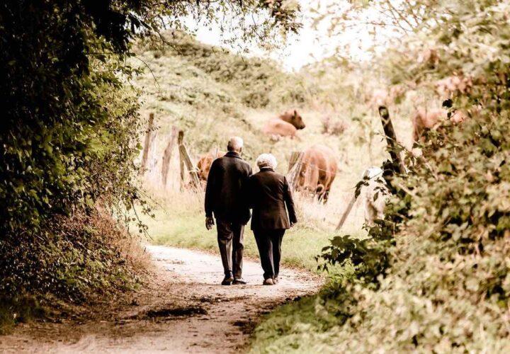exercise nursing home, long-term care, walking