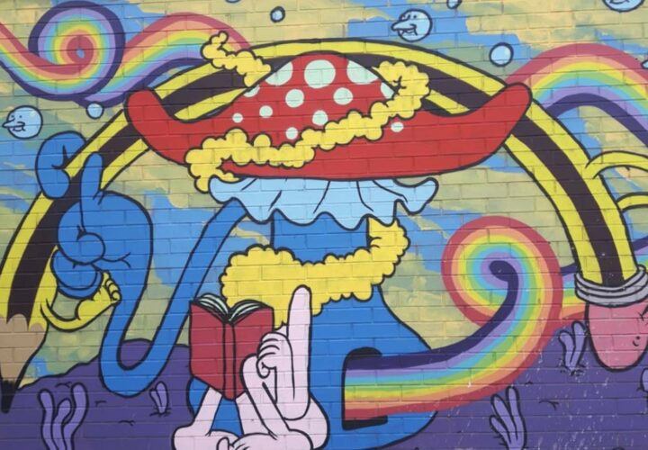 psychedelics brain health, stress
