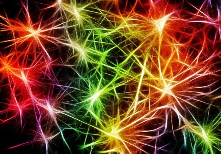 antibody side effect, brain inflammation, neuroinflammation