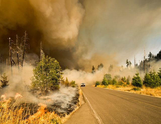 Wildfires and Alzheimer's